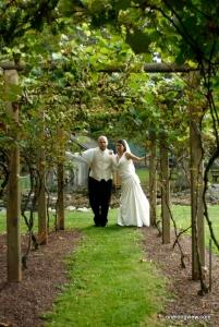 Sorrenti Cherry Valley Vineyards & Winery